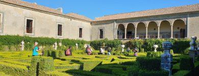 AMMei Descobrir | Visita ao Palácio e Quinta da Bacalhôa