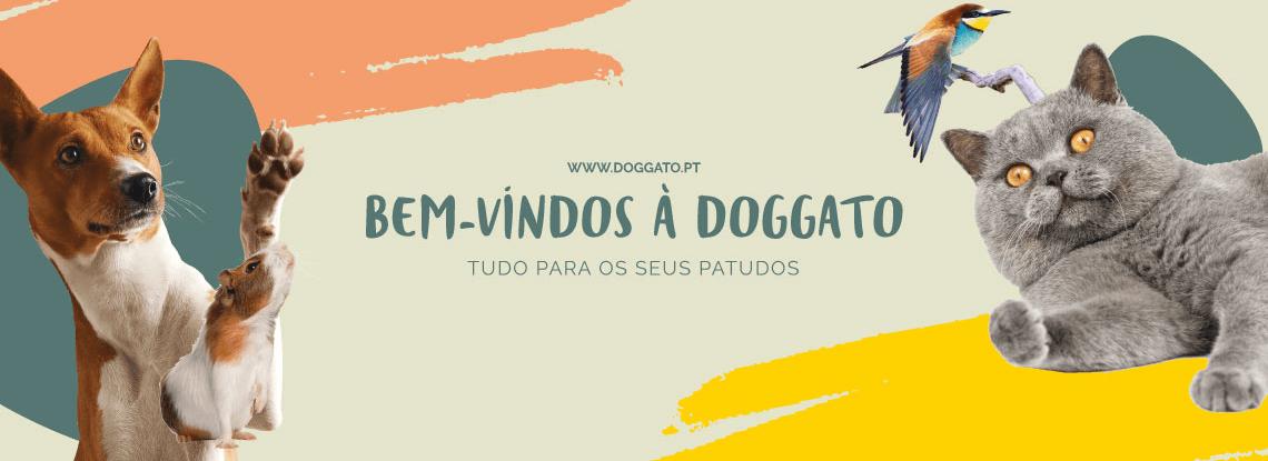 Bem-vindos à DOGGATO