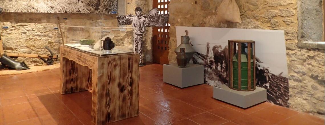 Exp-arqueologia (1)